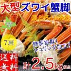 ズワイガニ 足 2.5kg ボイル 冷凍 ギフト 4L 蟹 カニ 北海道加工 堅蟹 脚 ずわい蟹