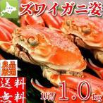 ズワイガニ 姿 1kg ボイル 冷凍 ギフト 特大 蟹 かに 北海道加工 カニ味噌 堅蟹 ずわい蟹