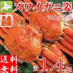 ズワイガニ 姿 ボイル 2尾で計1.5kg 大型 ずわい蟹