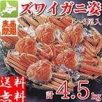 ズワイガニ 姿 4.5kg (6〜7尾) ボイル 冷凍 ギフト 蟹 かに 北海道加工 カニ味噌 堅蟹 ずわい蟹