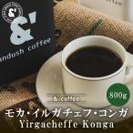 コーヒー豆 送料無料 珈琲豆 おてがるパックBIG モカ イリガチェフ コンガ農園 800g 約80杯分 コーヒー 豆 焙煎後すぐ発送 中煎り