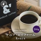 コーヒー豆 送料無料 珈琲豆 ネコポス おてがるパックmini ケニア カグモイニ 200g 約20杯分 コーヒー 豆 焙煎後すぐ発送 深煎り