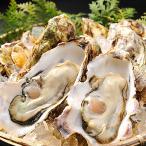 生食用 殻付き牡蠣(カキ) 10個(国産) 冷蔵便 築地直送
