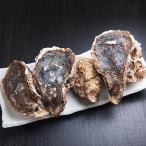 生食用 岩牡蠣(カキ) 5個(国産) 冷蔵便 築地直送