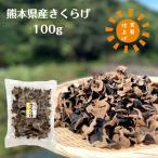 乾燥きくらげ 熊本県産 100g 送料無料 (国産 木耳 キクラゲ)