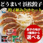 どうまい!浜松餃子 3種類の餡から選べる 5パック セット 75個入り  お取り寄せ 送料無料