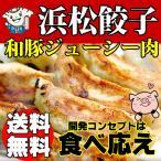 ショッピング餃子 浜松餃子 お取り寄せ 和豚ジューシー肉餃子 国産材料 薄皮 大粒20g 180個 送料無料