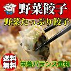 浜松餃子 お取り寄せ 野菜餃子 野菜5種類 国産材...