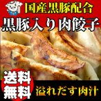 浜松餃子 お取り寄せ 黒豚餃子 国産材料使用 薄皮 大粒20g 180個 送料無料