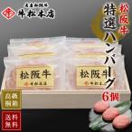 お歳暮 ギフト 内祝い 松阪牛 特選 ハンバーグ 160g × 6個 御歳暮 食品 肉 牛肉 和牛