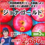 ジョナゴールド 5kg 秋田 鹿角 りんご 規格 12〜20玉前後 家庭用 傷あり 難あり 生産者直送 リンゴ 訳あり