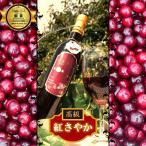 ※100本限定※【日本初!】山形県産さくらんぼ【紅さやか100%ワイン】Garnet-紅さやか-【2018年】【500ml】 母の日ギフト 母の日
