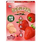 【九州限定】カントリーマアムあまおう苺ミルク味【16枚入り】