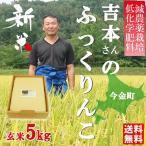 新米 平成28年産米 吉本辰也さんのふっくりんこ 玄米5kg 特別栽培米 送料無料 北海道今金町のふっくりんこ