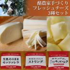 酪農家手づくり フレッシュチーズ3種セット 無添加