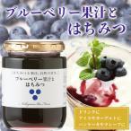 はちみつ 蜂蜜 ハチミツ ブルーベリー果汁とはちみつ300g