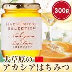はちみつ 蜂蜜 ハチミツ 大草原のアカシアの花のはちみつ300g 中国産