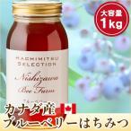 はちみつ 蜂蜜 ハチミツ カナダ産ブルーベリーのはちみつ1kg