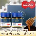お歳暮 はちみつ 蜂蜜 ハチミツ マヌカヘルス社マヌカハニーMGO30+ブレンド(250g×2本)ギフト箱入り