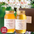 お歳暮 はちみつ 蜂蜜 ハチミツ 世界のはちみつセレクションヨーロッパ紀行(1kg×2本)(ハンガリーアカシア&ローズマリー)