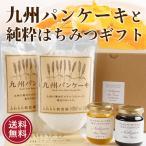はちみつ 蜂蜜 ハチミツ 九州パンケーキと純粋はちみつ2種セット 送料無料 お歳暮ギフト