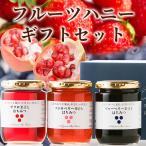 プレゼント はちみつ 蜂蜜 ハチミツ フルーツハニーギフト