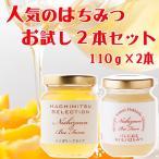 はちみつ 蜂蜜 ハチミツ 人気のはちみつお試し2本セット ハンガリー産アカシア&パンにぬるはちみつ各110g ダンボール箱入り WEB限定