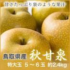 秋甘泉 あきかんせん  鳥取県産 JAとっとり 5L〜4Lサイズ 5〜6玉約2.4kg  送料無料 梨 なし ナシ 新甘泉 姉妹品種