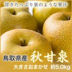 秋甘泉 あきかんせん  鳥取県産 JAとっとり  ちょっと訳あり 大きさお任せ 約5kg  送料無料 梨 なし ナシ 新甘泉 姉妹品種