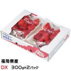 あまおう  福岡県産  デラックス DX  大粒 7〜11粒  約300g×2パック ホワイトデー 送料無料 ギフト 苺 いちご
