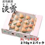 いちご 白いちご 淡雪 あわゆき 赤秀 大粒 3L〜2Lサイズ 270g×2パック 熊本県産 送料無料  苺 イチゴ