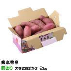 紅はるか べにはるか  熊本県 大津産 JA菊池 ちょっと訳あり  大きさおまかせ 約2kg 送料無料  さつまいも 蜜芋