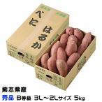 さつまいも 紅はるか 秀品 B等級 3L〜2Lサイズ 5kg 熊本県 大津産 JA菊池 べにはるか 蜜芋