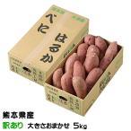 さつまいも 紅はるか 訳あり 大きさおまかせ 5kg 熊本県 大津産 JA菊池 べにはるか 蜜芋