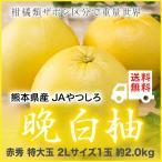 みかん 晩白柚 ばんぺいゆ  熊本県産 JAやつしろ 赤秀  超特大玉 2Lサイズ 1玉 約2kg 化粧箱入り  ギフト 柑橘 蜜柑