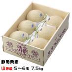 メロン クラウンメロン 静岡県産  山等級 6玉  約7.5kg 送料無料 ギフト めろん