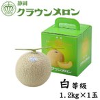ショッピングメロン クラウンメロン 静岡県産 白等級 約1.2kg 1玉  ギフト 送料無料