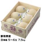 メロン クラウンメロン 静岡県産 白等級 6玉 約7.5kg 送料無料 ギフト めろん