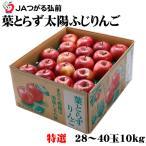葉とらず太陽ふじりんご  青森県産 JAつがる弘前 糖度12度以上 特選 28〜40玉 約10kg お歳暮 クリスマス ギフト 送料無料 サンふじ 林檎 リンゴ
