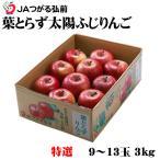 送料無料 青森県産 JAつがる弘前 『葉とらず太陽ふじりんご』 糖度13度以上 特選 9〜13玉 (約3.0kg)