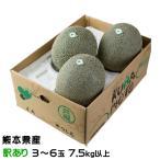 肥後グリーン メロン 熊本県(八代産)  風のいたずら(ちょっと訳あり) 3玉〜6玉  約8kg  送料無料