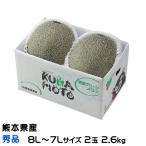(送料無料)  熊本県(八代産) 『肥後グリーン』 超特大玉 7L〜8Lサイズ  2玉入り(約5.0kg以上)