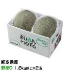 肥後グリーン メロン 熊本県(八代産) 風のいたずら ちょっと訳あり 2玉 約4kg  送料無料 お中元 夏ギフト