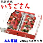 お歳暮 いちごさん AA等級 4〜11粒 240g×2パック 佐賀県産 JA佐賀 白石地区 苺 イチゴ