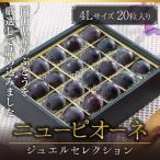 ぶどう ニューピオーネ ジュエルセレクション 岡山県産 特秀 4Lサイズ 20粒 送料無料 葡萄  ブドウ