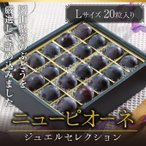 ぶどう ニューピオーネ ジュエルセレクション 岡山県産 特秀 Lサイズ 20粒 送料無料 葡萄 ブドウ