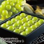 ぶどう シャインマスカット ジュエルセレクション 岡山県産 特秀 5L 20粒入り 送料無料 葡萄 ブドウ 葡萄 ブドウ