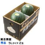 すいか 夢黒小玉すいか 熊本県産 JA鹿本 秀品 5Lサイズ 2玉 約7.0kg 送料無料 お中元 スイカ 西瓜