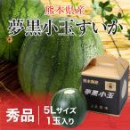 すいか 夢黒小玉すいか 熊本県産 JA鹿本  秀品 5Lサイズ 1玉入り 約3.5kg 送料無料 お中元 スイカ 西瓜