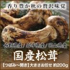 松茸 長野 県 産 画像